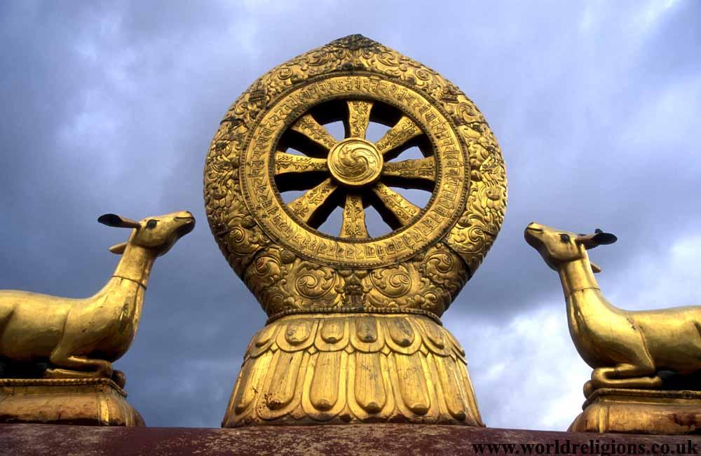 deer, wheel, dharma, Buddhism, Johkang, palace